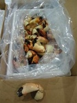 10LB Medium Florida Stone Crabs (5-8 Claws per LB)