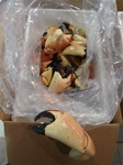 10LB Colossal Florida Stone Crabs (1-2 Claws per LB)